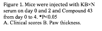 Text Box: Figure 1. Mice were injected with KB×N serum on day 0 and 2 and Compound 43 from day 0 to 4. *P<0.05 A. Clinical scores B. Paw thickness.