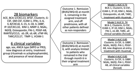 The Value of a Combination of Serum Proteins to Identify Response to Induction Therapy Among Patients with ANCA-Associated Vasculitis - ACR Meeting Abstracts